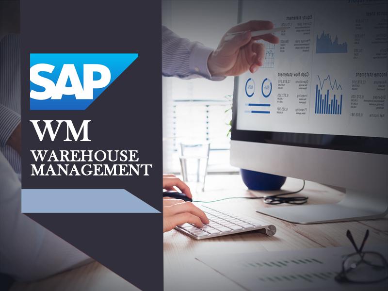 SAP WM Warehouse Management Training - SMECFintech